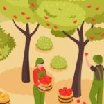 Can we feed the growing population in 2050 - RoyalGroupAS