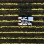 Improve of weather forecasting in modern agriculture and farming